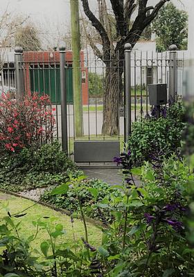 Jardines Floracion invernal